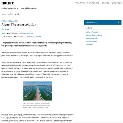 Algae: The scum solution