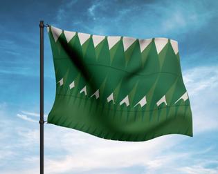 4.-timidity-flag-mockup.jpg
