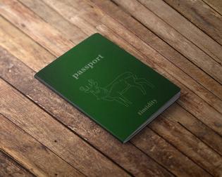 2.-timidity-passport.jpg