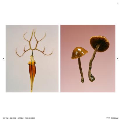 Mini Title — Portfolio