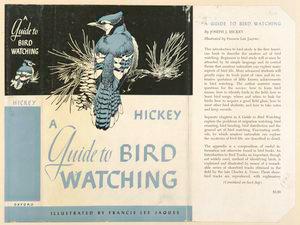A guide to bird watching.