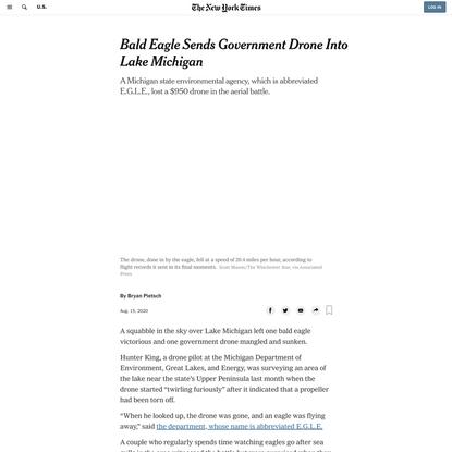 Bald Eagle Sends Government Drone Into Lake Michigan