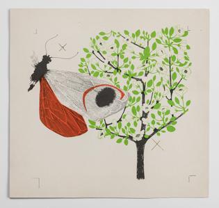 Enzo Mari, La mela e la farfalla, printing draft (1958/59)