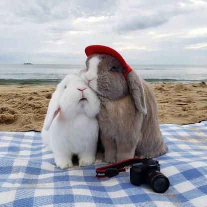 """@mignonettetakespictures on Instagram: """"Summer memories 🌞💦 @stayathomebun"""""""