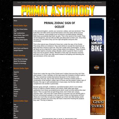 Primal Astrology - Spirit of the Ocelot