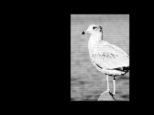 Early experiments: encoding images with sound