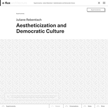 Aestheticization and Democratic Culture