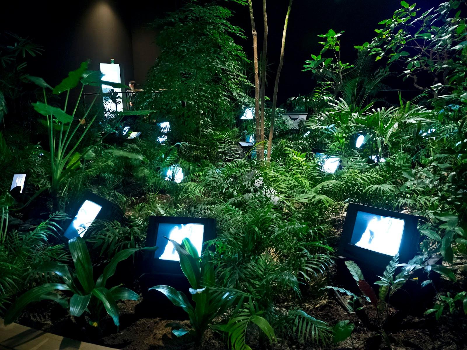 TV Garden, Nam June Paik