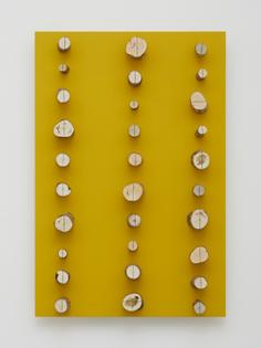 kishio-suga-yellow.jpg