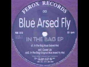 [1995] blue arsed fly - in the bag (russ gabriel mix)