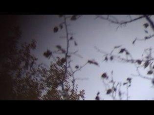 Sea Oleena ~ Weaving a Basket (Full Album Video)