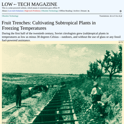Fruit Trenches: Cultivating Subtropical Plants in Freezing Temperatures