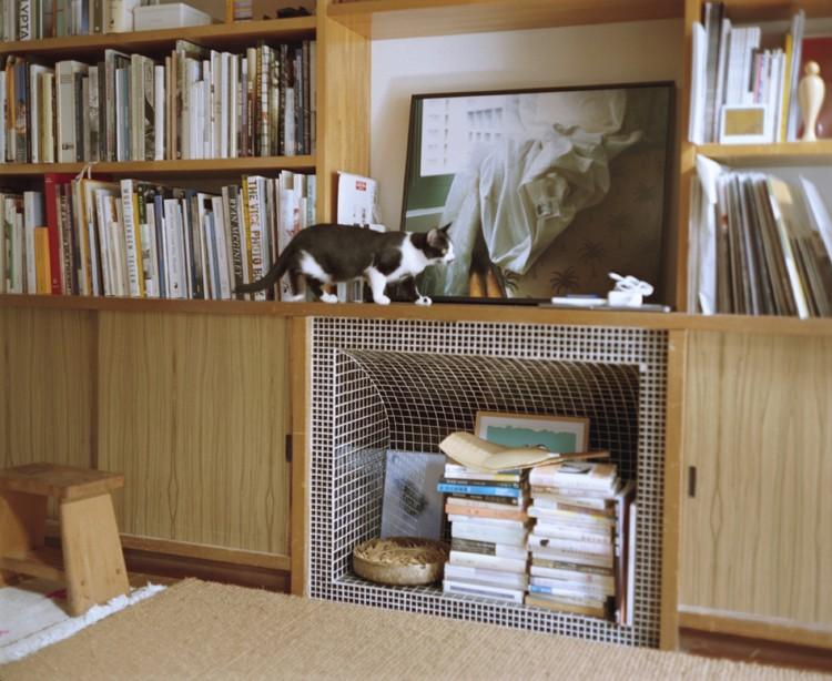cat8-5.jpg