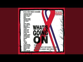 What's Going On Feat. Chuck D (The Neptunes This One's For You Mix)