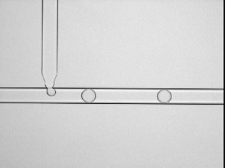 T-shaped droplet generator