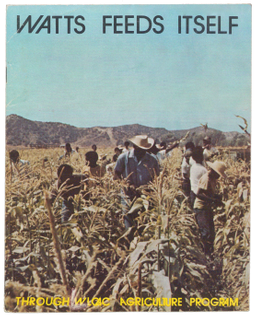 Watts Labor Community Action Committee (WLCAC) Agriculture Program, Watts Feeds Itself (ca. 1970)