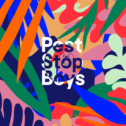 Pest Stop Boys - Pest Control in South East England