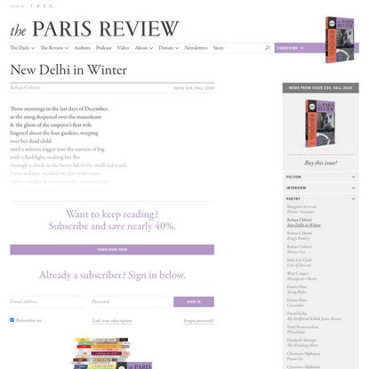New Delhi in Winter
