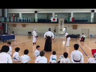 Karate shotokan vs shorin-ryu final match