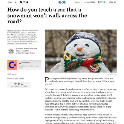 How do you teach a car that a snowman won't walk across the road? – Melanie Mitchell | Aeon Ideas