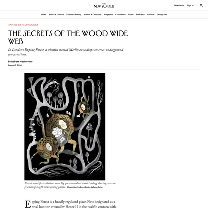 The Secrets of the Wood Wide Web