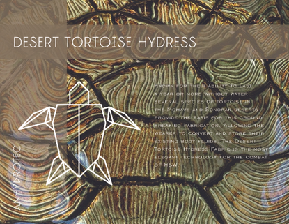 brochure-tortoise-simplified.pdf