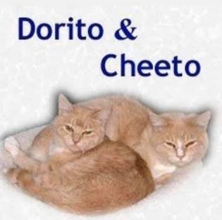 dorito & cheeto