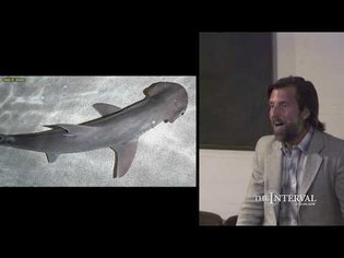 Humanity and the Deep Ocean | James Nestor