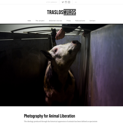 Tras los Muros | Photography and video for Animal Liberation