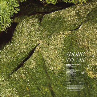 Fleet Foxes - Shore Stems (2020)