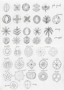 le-fruit-sketches-02.jpg