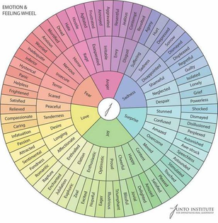 emotion & feeling wheel