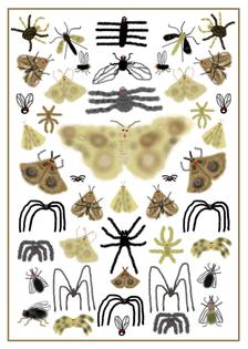 posterbugs.jpg