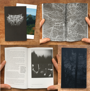 Becoming the Forest Issue #2