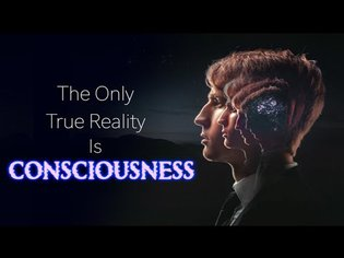 Consciousness: The ONLY True Reality