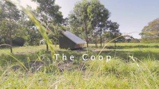 The Coop Film