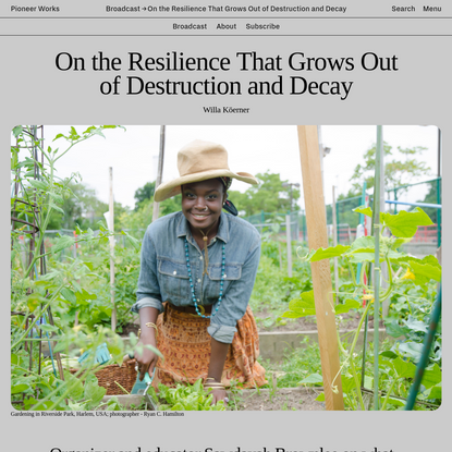 On the Resilience That Grows Out of Destruction and Decay