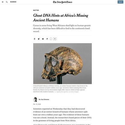 Ghost DNA Hints at Africa's Missing Ancient Humans