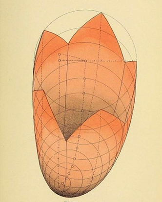 """The Public Domain Review on Instagram: """"Diagrams from Geometrical Psychology (1887), a book by Louisa S. Cook detailing New ..."""