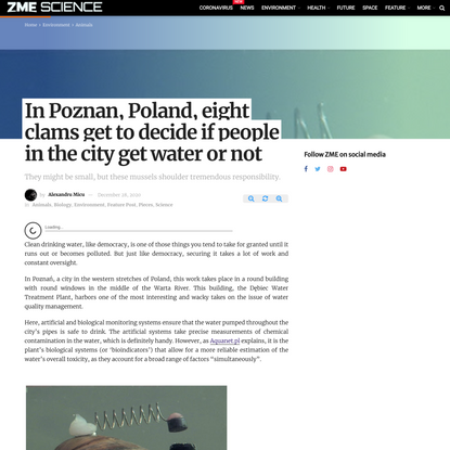 In Poznan, Poland, eight clams get to decide if people in the city get water or not