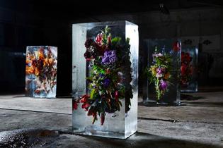 iced-flowers-makoto-azuma-1.jpg