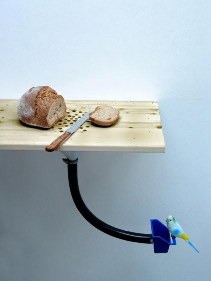 bird feeder – bread crumbs