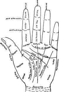 766px-chart_of_the_hand.png