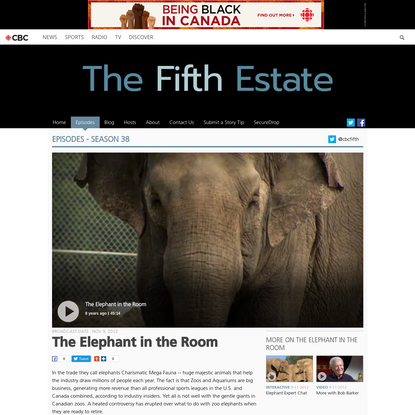 The Elephant in the Room - Episodes - The Fifth Estate