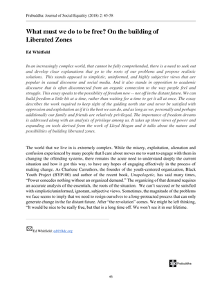 on_the_building_of_liberated_zones.pdf