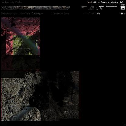 Cheryl Donegan: Grlz + Veils — Forthcoming Studio