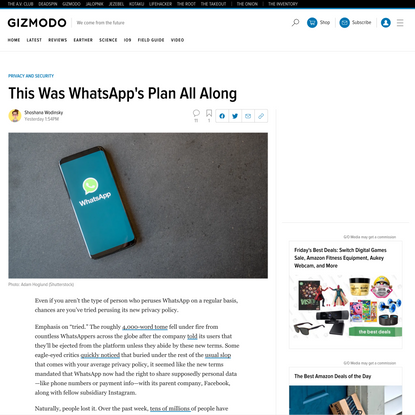 This Was WhatsApp's Plan All Along