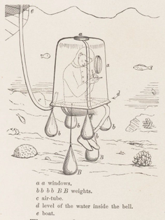 Lithograph of underwater scene Eugen Ransonnet-Villez from his Sketches of the Inhabitants, Animal Life and Vegetation in the Lowlands and High Mountains of Ceylon: As Well as of the Submarine Scenery near the Coast Taken from a Diving Bell. BIODIVERSITY HERITAGE LIBRARY/PUBLIC DOMAIN