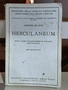 """""""Herculaneum"""", Urban Ore, Berkeley CA"""