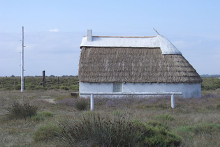 """A 20th-century """"gardian"""" home. The pole is used to climb up and oversee the animals"""